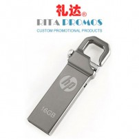 Branded USB Drives with Keyring (RPPUFD-8)